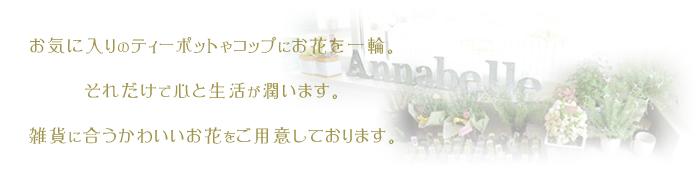 鎌ヶ谷市の花屋さんAnnabelle